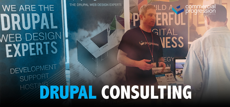 Drupal consulting services focused on web development