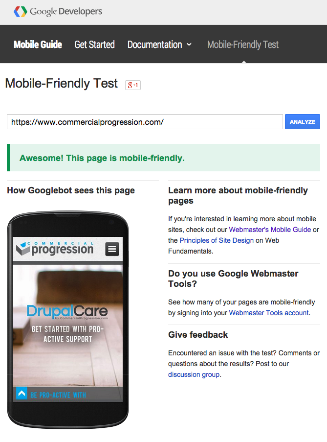 Google Mobile friendly test website